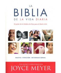 BIBLIA DE LA VIDA DIARIA RUSTICA