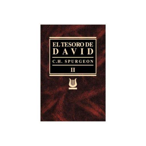 Tesoro de David 2-Rustica